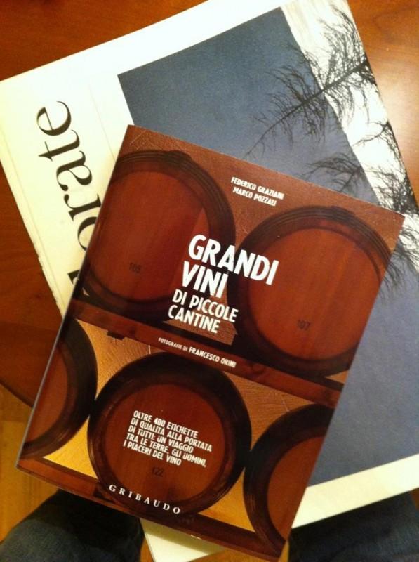 Grandi vini di piccole cantine vendita vini online for Piccole planimetrie con cantine